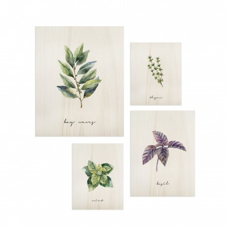 Pack de cuadros Plants